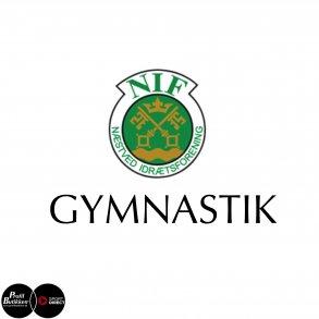 Næstved IF Gymnastik